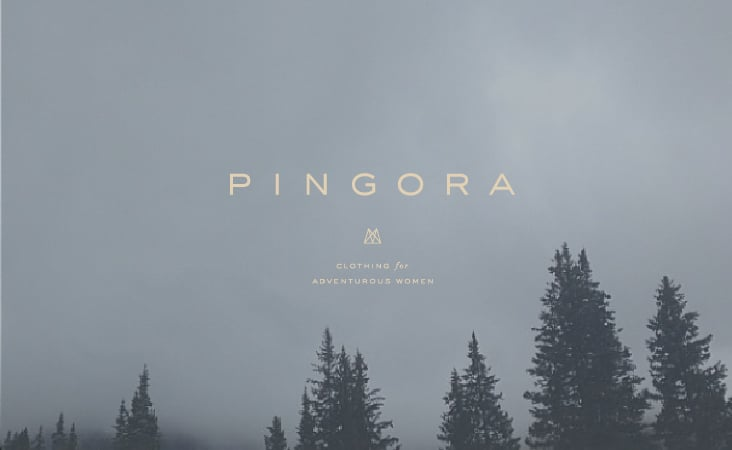 Pingora_blog-01