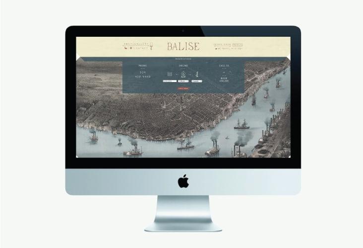BaliseWebsite2